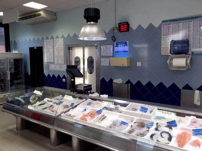 sede-2-pescheria-de-salvo-srl-vendita-distribuzione-pesce-fresco-surgelato-prodotti-congelati-matera-basilicata-puglia