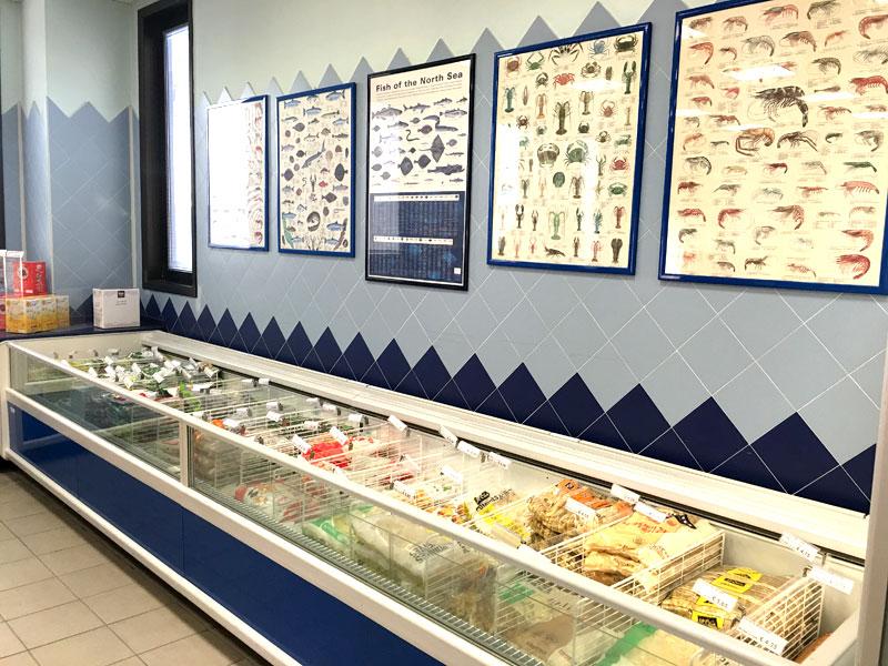 sede-4-pescheria-de-salvo-srl-vendita-distribuzione-pesce-fresco-surgelato-prodotti-congelati-matera-basilicata-puglia