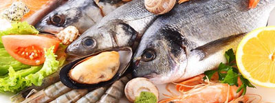 pesce-fresco-home-pescheria-de-salvo-srl-vendita-distribuzione-pesce-fresco-surgelato-prodotti-congelati-matera-basilicata-puglia